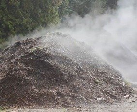 commercial compost in progress