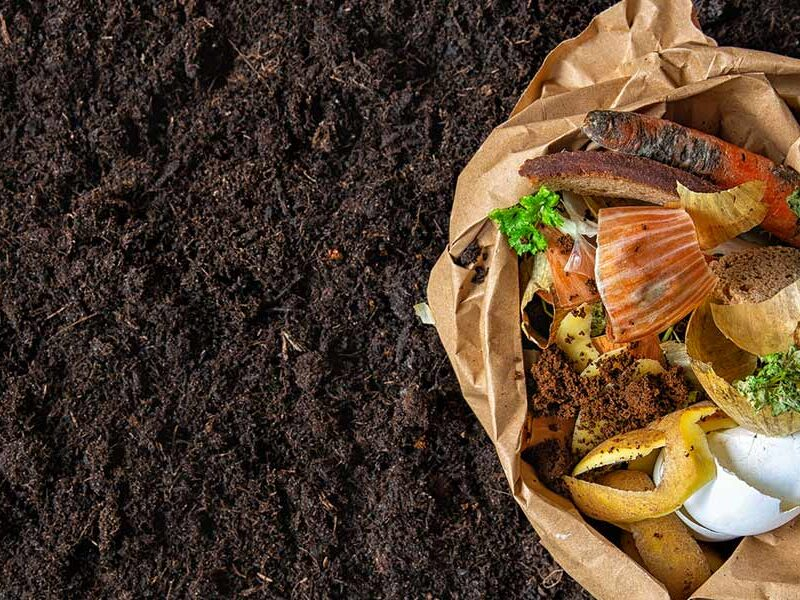 Closing the loop by gifting back finished compost you helped create